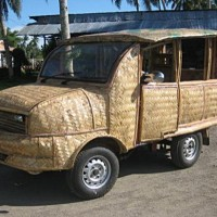 Nadwozie filipińskiego samochodu z palmy