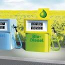 Biopaliwa a środowisko