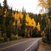 Kierowco, jesienią uważaj przede wszystkim na… ładną pogodę